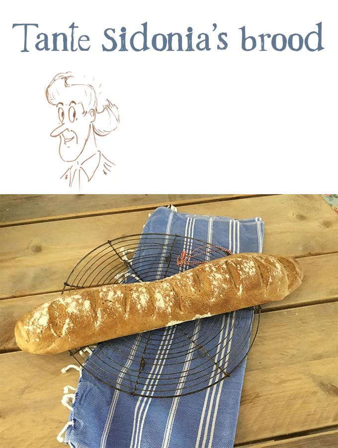 Tante Sidonia's brood