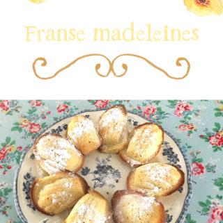 Franse madeleines