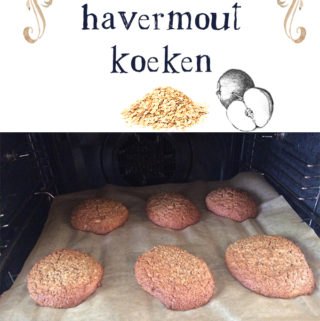 appel havermout koeken recept