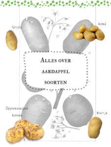 Welke aardappels voor welk gerecht?