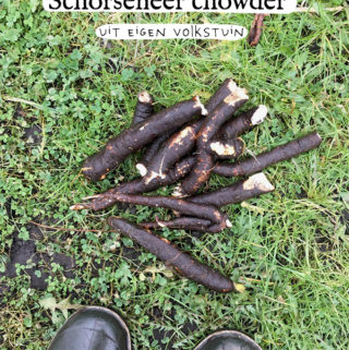 schorseneer chowder